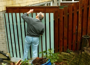 Fitting newly painted fence panels