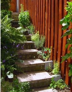 The original garden steps