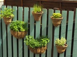 Vertical herb garden2