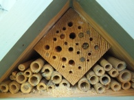 Beehotel has guests!